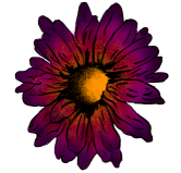 Floralwerkstatt-GG